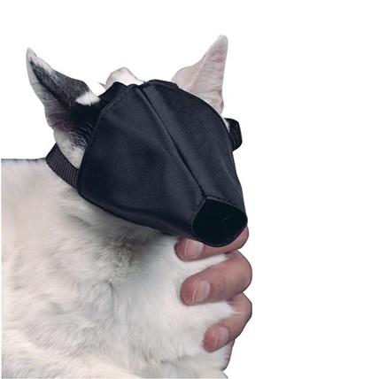 BUSTER munkorg katt