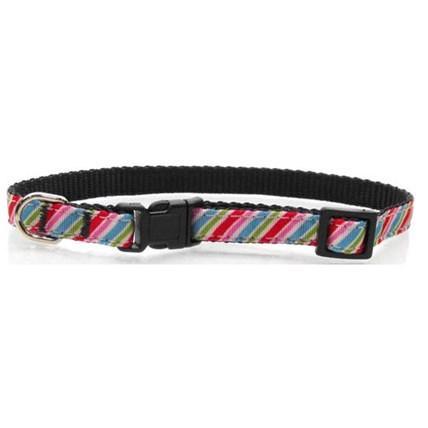 Katthalsband Diagonal Stripe Rainbow
