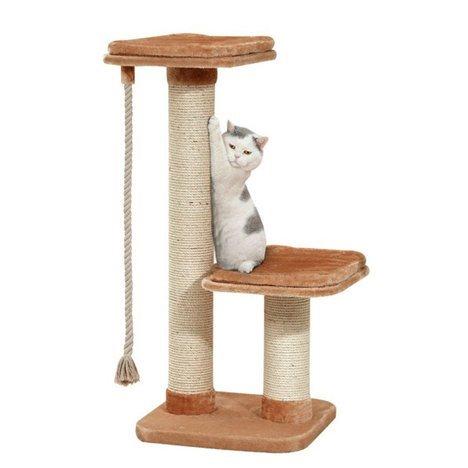 klösträd för katt