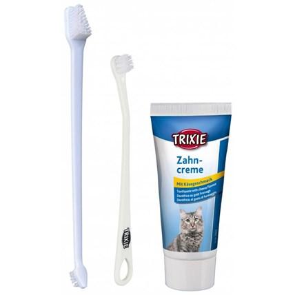Tandvårds set för katt 2 borstar + tandkräm m ostsmak