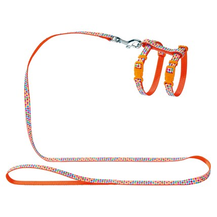 Kattsele Seventies Orange