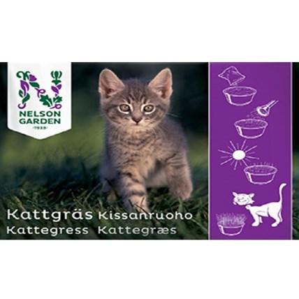 Kattgräs i Fröpåse