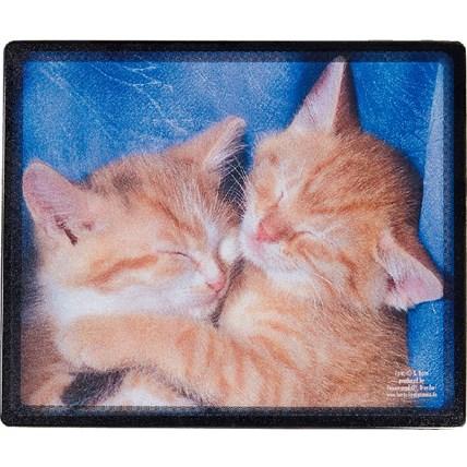 Musmatta 2 gula katter
