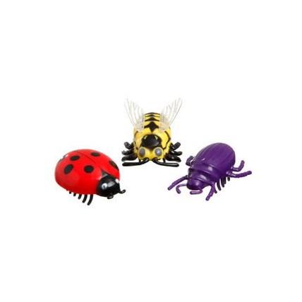 Kattleksak Tokiga insekter, Röd