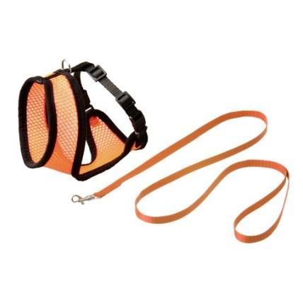 Kattsele nät med koppel kattunge orange